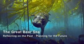Great-Bear-Sea-Graphic