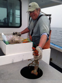 Richard Nelson, Maine Lobsterman 4x6, 72dpi